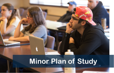 minor plan of study form